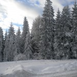 Szlak na Mogielicę z Przełęczy Słopnickiej