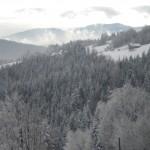 Słopnice zimą